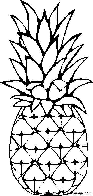 image coloriage-fruit.jpg